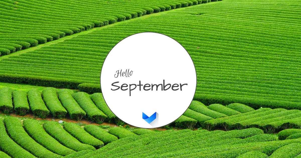 ספטמבר 19