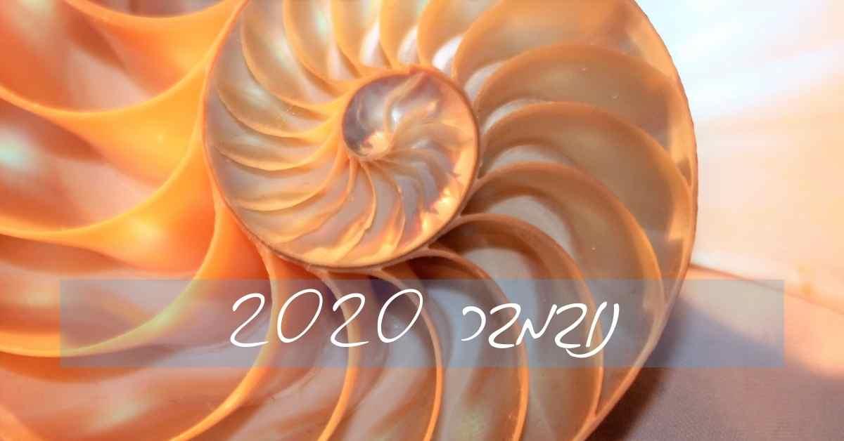 נובמבר 2020 (5)